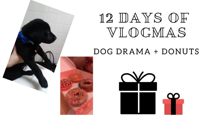 12 Days of Vlogmas (Dog Drama + Donuts)